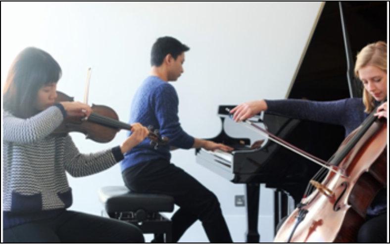 The Tee Trio